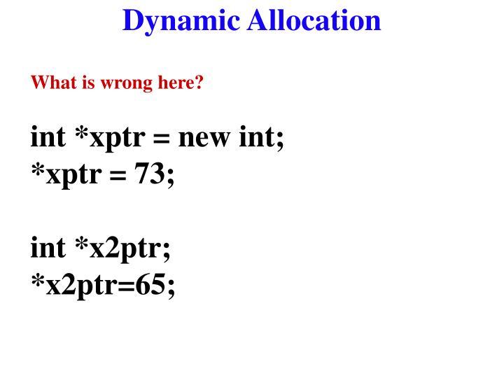 Dynamic Allocation