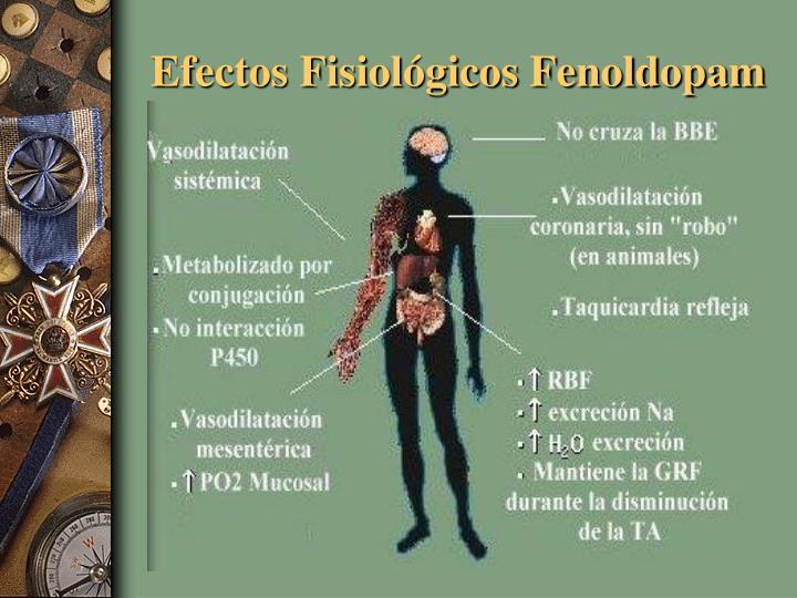 Efectos Fisiológicos Fenoldopam