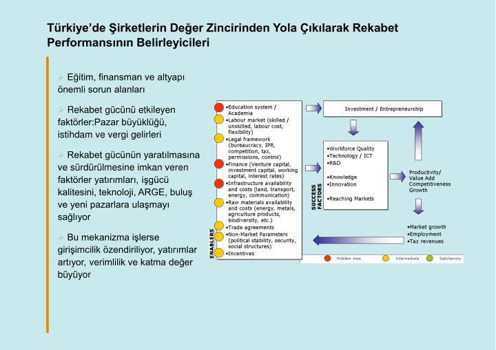 Türkiye'de Şirketlerin Değer Zincirinden Yola Çıkılarak Rekabet Performansının Belirleyicileri