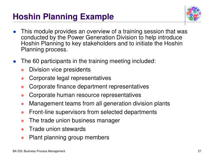 Hoshin Planning Example