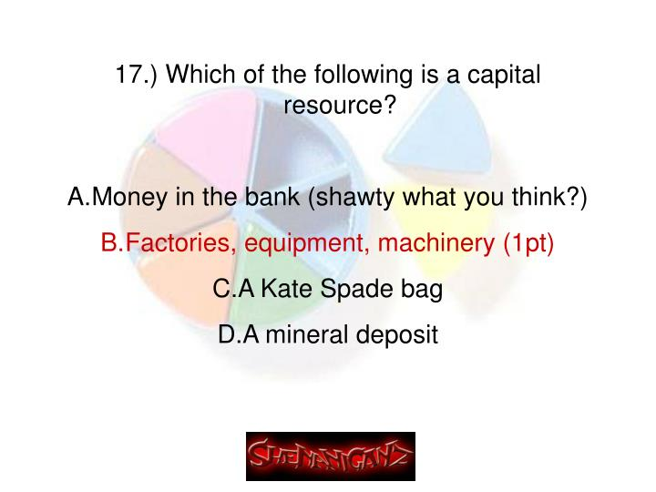 17.) Which of the following is a capital resource?