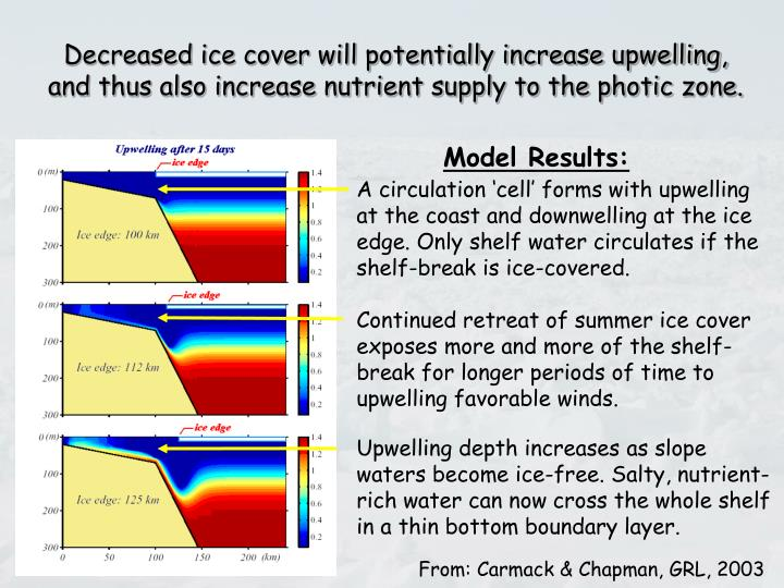 Decreased ice cover will potentially increase upwelling,