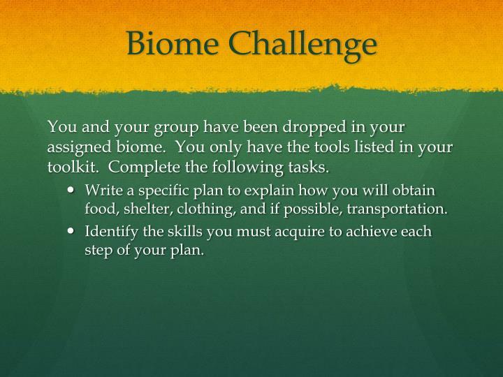 Biome Challenge