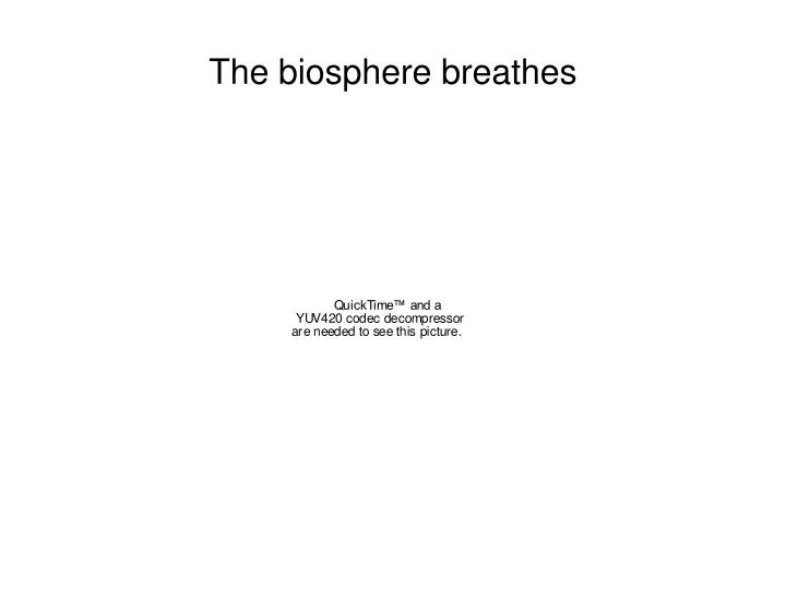 The biosphere breathes