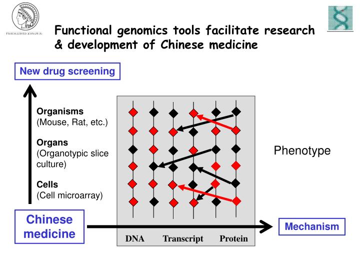 Functional genomics tools facilitate research & development of Chinese medicine
