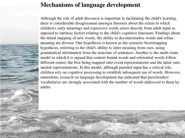 Mechanisms of language development
