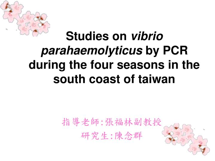 studies on vibrio parahaemolyticus by pcr during the four seasons in the south coast of taiwan n.