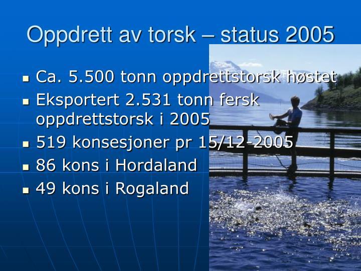 Oppdrett av torsk – status 2005