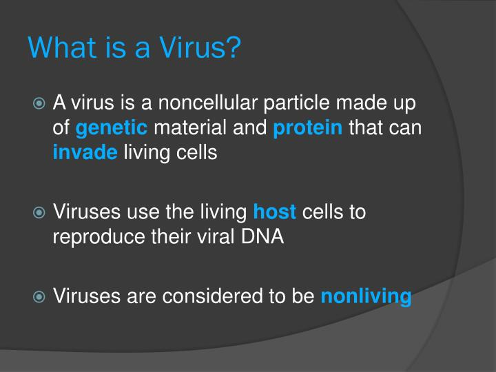 What is a Virus?
