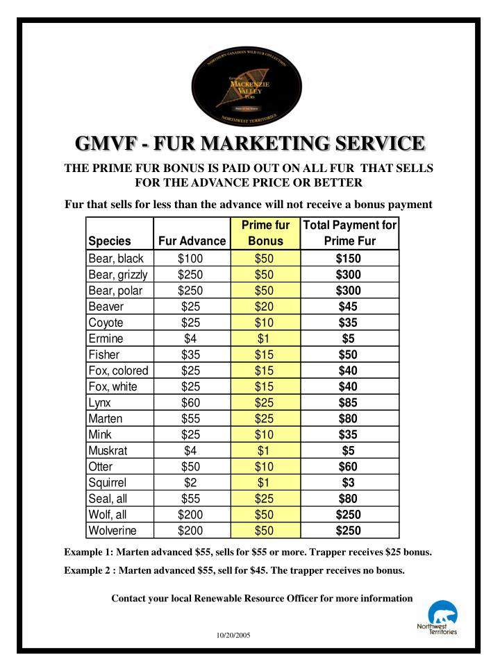 GMVF - FUR MARKETING SERVICE