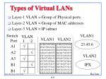 types of virtual lans