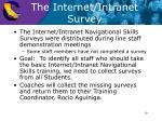 the internet intranet survey