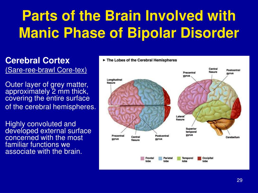 PPT - MODULE 2: The Impact of Mental Health Disorders on ...