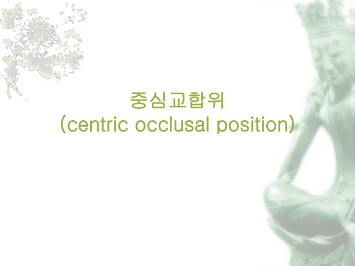 Centric occlusal position