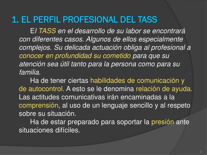 1 el perfil profesional del tass