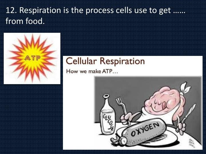 12. Respiration is the process cells use to get …… from food.
