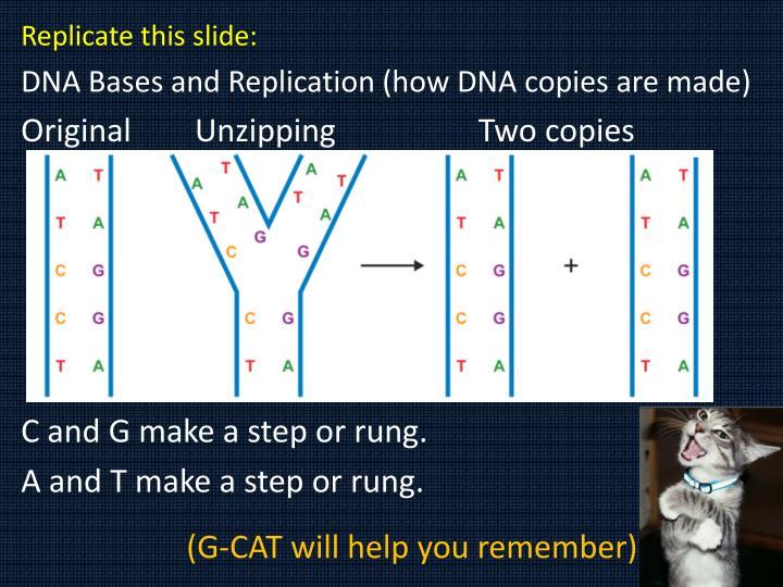 Replicate this slide: