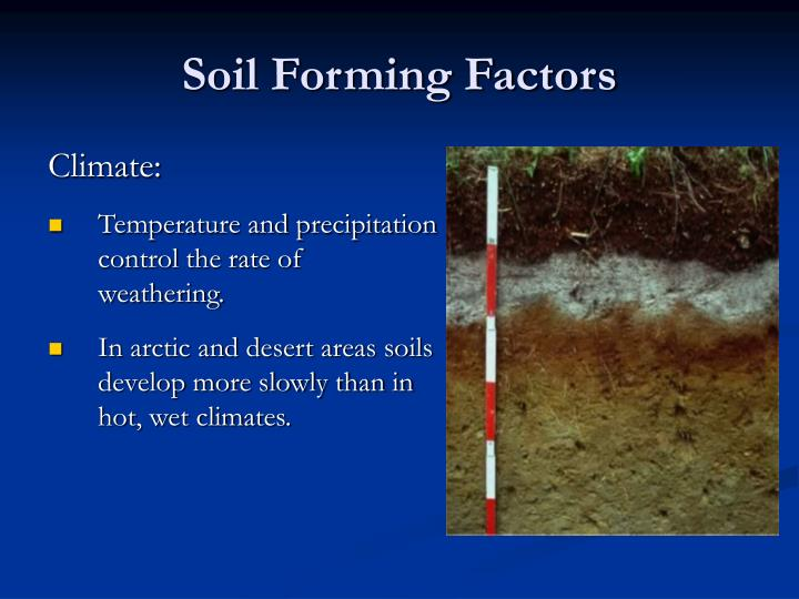 Ppt introduction to soil science powerpoint presentation for Soil forming factors