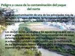 peligro a causa de la contaminaci n del yaque del norte