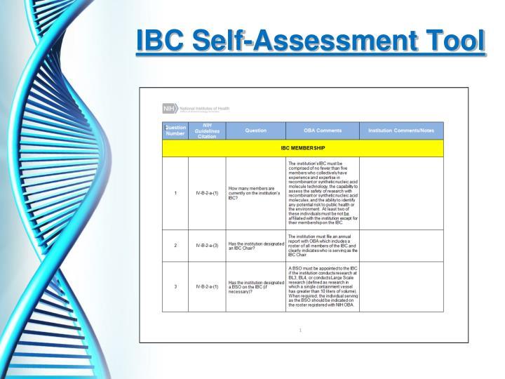 IBC Self-Assessment