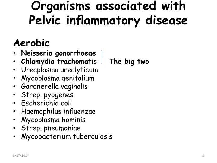 Organisms associated with Pelvic