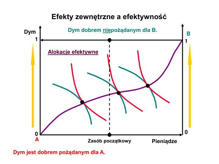 Efekty zewnętrzne a efektywność