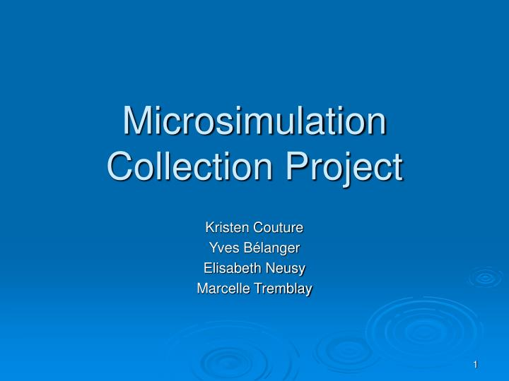 microsimulation collection project n.