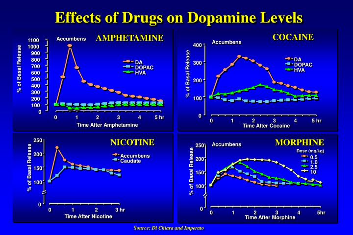 Effects of Drugs on Dopamine Levels
