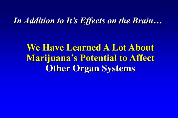In Addition to It's Effects on the Brain…