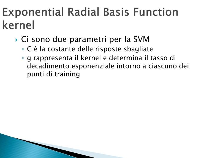 Exponential Radial Basis Function kernel