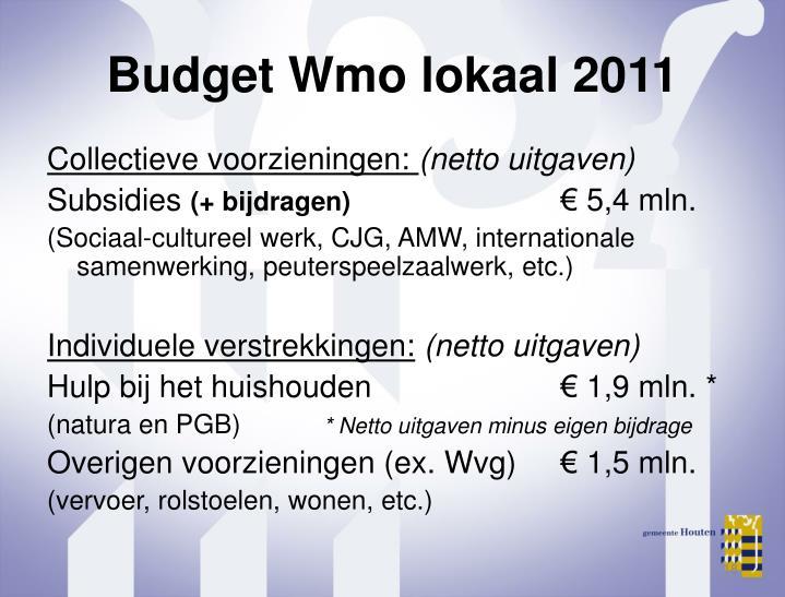 Budget Wmo lokaal 2011