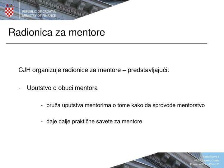 Radionica za mentore