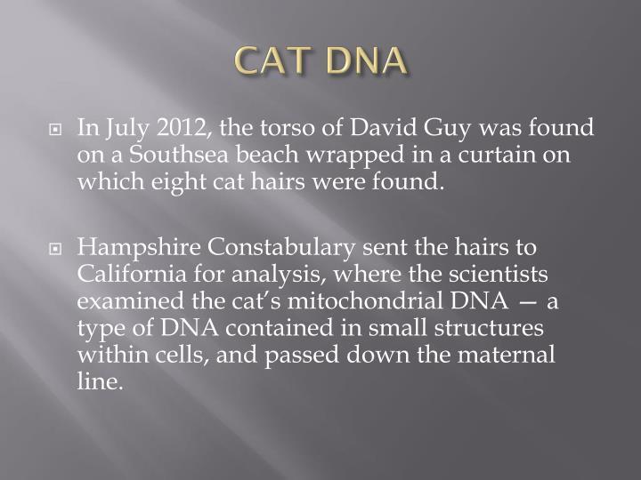 CAT DNA