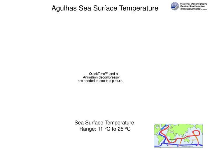 Agulhas Sea Surface Temperature
