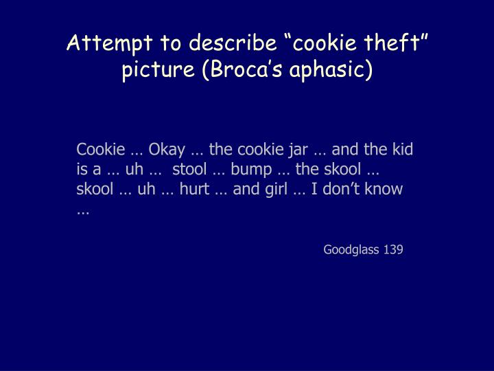 """Attempt to describe """"cookie theft"""" picture (Broca's aphasic)"""