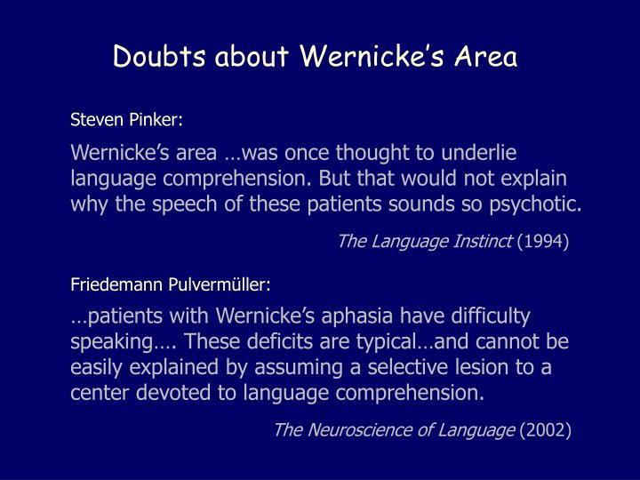 Doubts about Wernicke's Area