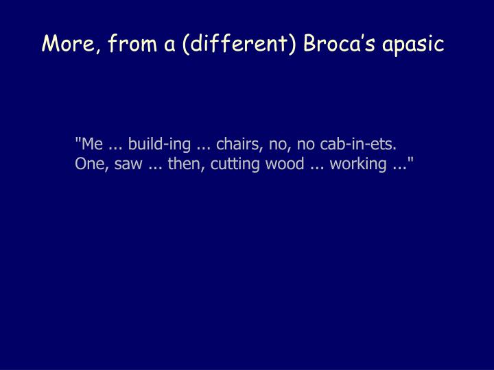 More, from a (different) Broca's apasic