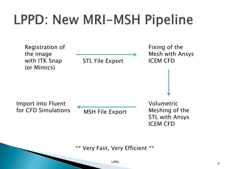 LPPD: New MRI-MSH Pipeline