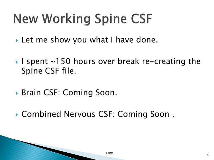 New Working Spine CSF