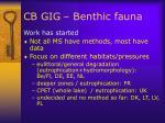 cb gig benthic fauna