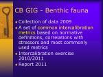 cb gig benthic fauna2