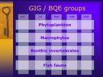 gig bqe groups