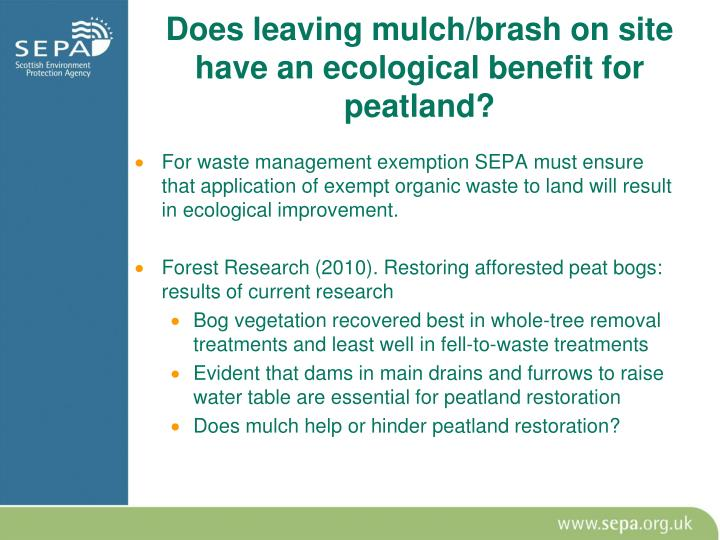 Does leaving mulch/brash on site have an ecological benefit for peatland?