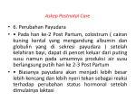 askep postnatal care7