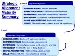 strategic alignment maturity summary1