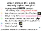 calcium channels differ in their sensitivity to pharmacological reagents