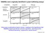 snares were originally identified in yeast trafficking assays