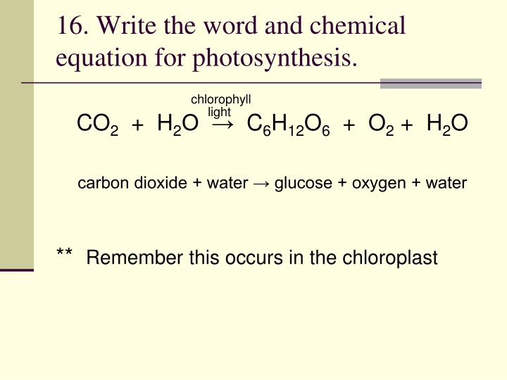16. Write the word and chemical equation for photosynthesis.