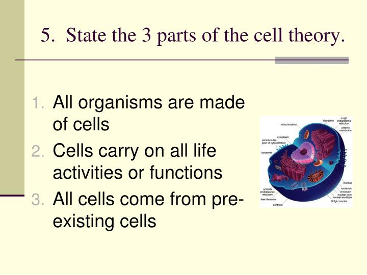 5.  State the 3 parts of the cell theory.