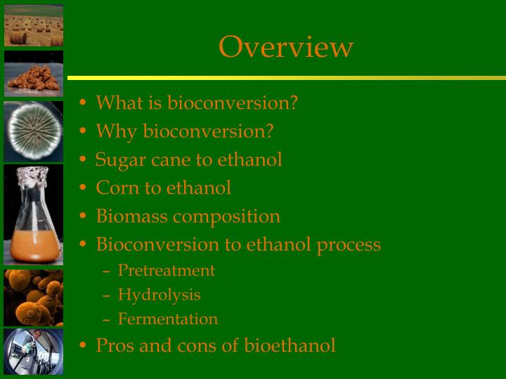 Ppt Bioconversion Of Biomass To Ethanol An Overview Powerpoint